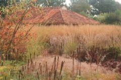 Liannes-siergrassen-tuin