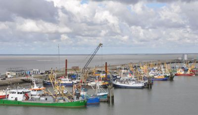Lauwersoog-haven