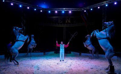 Circus-renz