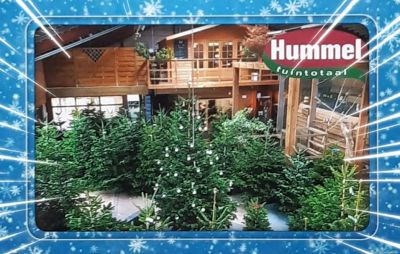 Hummel-kerst