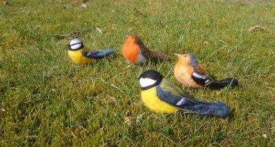 naaldvilten vogels
