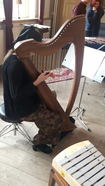 Duo nesje harp