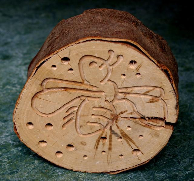 insecten-bijenhotel
